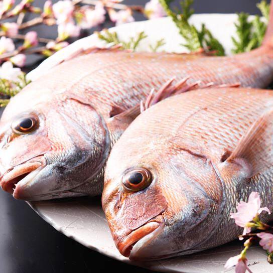 全国より厳選の魚介類
