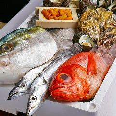 全国各地より直送、こだわりの鮮魚
