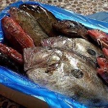 大好評!地魚の質を追求