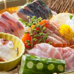 旬鮮魚のおまかせ6点盛り