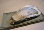 北海道 仙鳳趾牡蠣