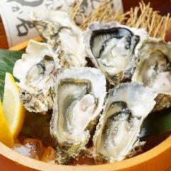 北海道厚岸(あっけし)産牡蠣漁師大澤さん直送の生かき