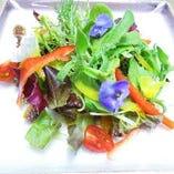 紀伊国野菜のサラダ