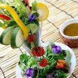 紀伊国野菜のバーニャカウダパフェ