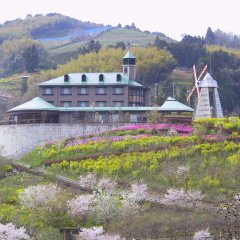 花の森ホテル レストラン風花