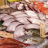 毎朝仕入れる鮮魚
