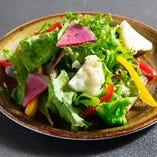 彩野菜のサラダ(アンチョビドレッシング or 和風ドレッシング)