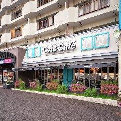 キャッツカフェ港店
