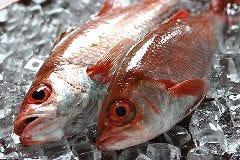 輪島の釣りのどぐろ焼き霜造り