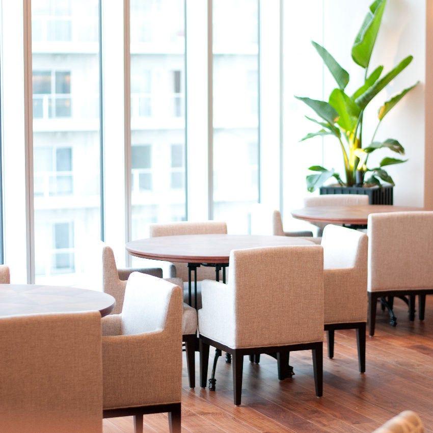 大きな窓から光が差し込む開放的な空間で、贅沢ランチを。