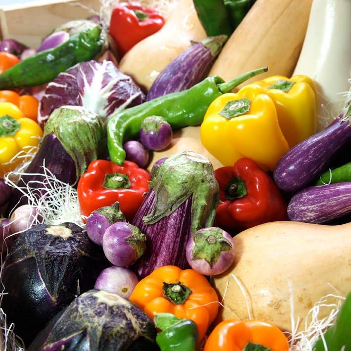 新鮮な季節の野菜