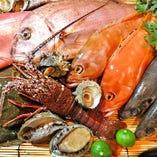 日本全国より入荷の日替わり鮮魚【大阪府】