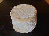タランテー(農家製)(フランス産、山羊乳製、シェーヴルタイプ)