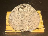 サン ド ヌーヌー(フランス産、山羊乳製、シェーヴルタイプ)