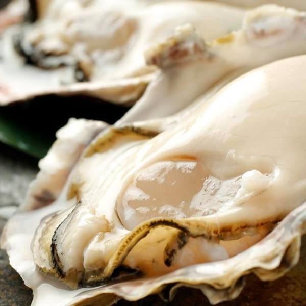 ■産地別の牡蠣食べ比べコース