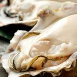 当店自慢の牡蠣【北海道など季節にあわせて仕入れています。】