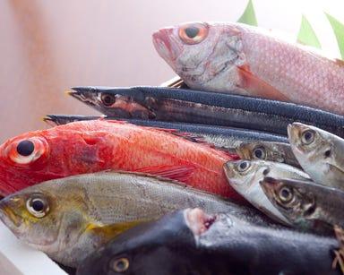 旬魚と創作和食 旬味 いやさか  こだわりの画像