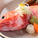 漁師直送!新鮮旬魚 旨い魚はいやさかで!