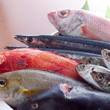漁師直送!目利きが選んだ旬鮮魚!