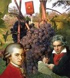 【モーツァルトを聴いて育ったワイン】は深い味わい フィレンツェ大学研究結果