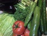 新鮮な野菜【指宿】