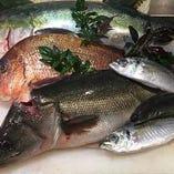 鮮魚【北海道】