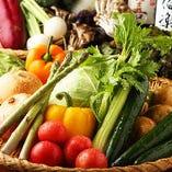 生産農家直送!朝獲れ有機野菜へのこだわり♪【神奈川県】