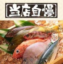 鮮度抜群の魚を毎日仕入しています