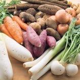化学肥料も農薬も使わない愛媛からの直送野菜