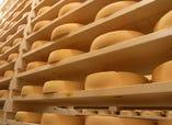 ラクレットチーズは各地から厳選してお取り寄せ。