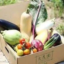 産地直送の新鮮な食材をご堪能