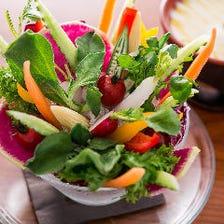 地物野菜の菜園風バーニャカウダ