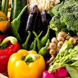 契約農家産地直送の新鮮野菜をふんだんに使用【東京都中央卸売市場豊島市場】
