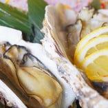 新鮮な魚介も豊富に取り揃え!様々な料理でご堪能ください!