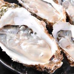 全国各地から一年中入荷!岩牡蠣・真牡蠣・地牡蠣