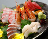 【産地直送!!】千葉の内房から朝にあがった鮮魚!