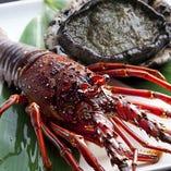 豊富な魚介が、より一層宴を彩ります。