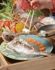 Katsuura Katsura