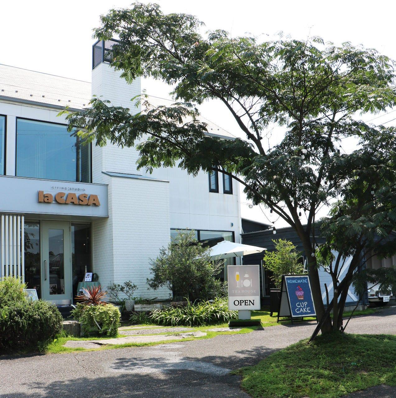 lacasa 江南店