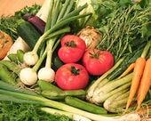 シェフが選んでくる美味しい野菜