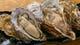 仙川で通年でご提供できる生牡蠣が当店の自慢!