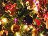 ☆2020 Xmasディナー☆ LEDクリスマスツリーを眺めながらクリスマスソングの生演奏でお楽しみ☆