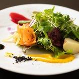 【サラダ】 季節に合わせた彩り豊かなコンポジションサラダです