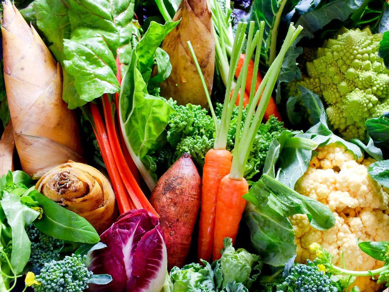 厳選食材を使用した旬菜料理の数々