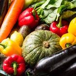 ~ 太陽の日を浴びた有機野菜 ~【指定農家から仕入れた新鮮野菜】