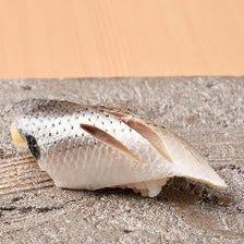 季節毎の旬を彩る厳選の鮮魚を堪能