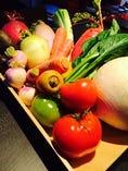 地元横浜を中心にした神奈川の新鮮野菜【神奈川県横浜市】
