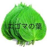 韓国のエゴマの葉【韓国産エゴマの葉】