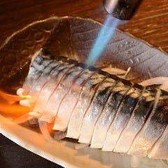 炙り〆サバ 【Broiled vinegared mackerel】