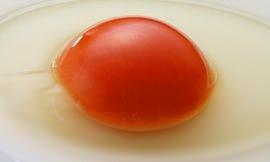 山梨県産地鶏、中村農場の卵